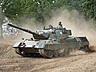 upload.wikimedia.org_800px-Leopard_1v_lesany.jpg