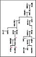皇帝系図_0.png